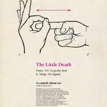 plakat-little-death-mala-smrt-recenze