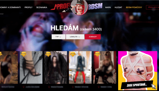 Recenze erotické fetish seznamky profiBDSM – zkušenosti, podmínky, uživatelé, …